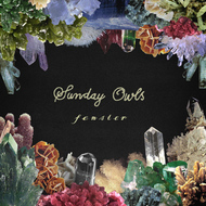 Albumcover Fenster - Sunday Owls