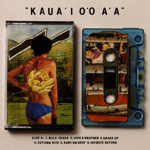 Albumcover Gentle Friendly - KAUA'I O'O A'A