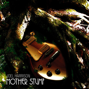 Albumcover Joel Harrison - Mother Stump