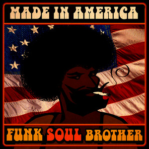 Albumcover Various Artists - Made in America - Funk Soul Brother!