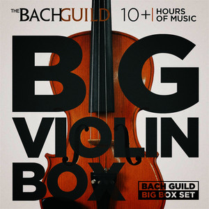 Albumcover Various Artists - Big Violin Box