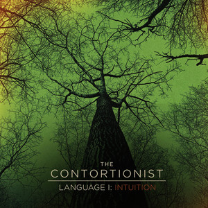 Albumcover The Contortionist - Language I: Intuition