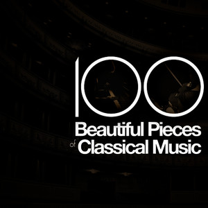 Albumcover Franz Schubert - 100 Beautiful Pieces of Classical Music