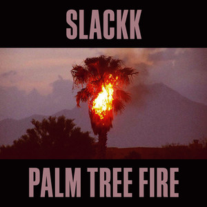 Palm Tree Fire