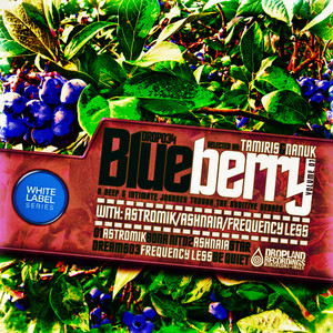 Albumcover Various Artists - Blueberry, Vol. 01 Selected by Tamiris & Nanuk