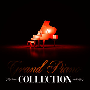 Albumcover Franz Schubert - Grand Piano Collection