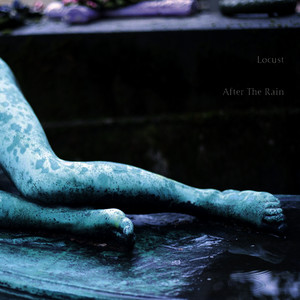 Albumcover The Locust - After the Rain