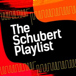 Albumcover Franz Schubert - The Schubert Playlist