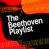 Albumcover Ludwig van Beethoven - The Beethoven Playlist