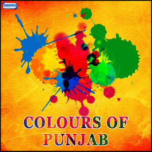 Albumcover Various Artist - Colours of Punjab