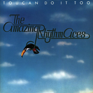Albumcover The Amazing Rhythm Aces - Toucan Do It Too
