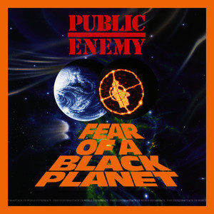 Fear Of A Black Planet (Deluxe Edition [Explicit])