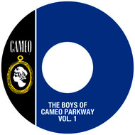 Albumcover Various Artists - The Boys Of Cameo Parkway Vol. 1