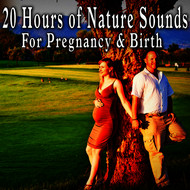Meditation Zen Master - 20 Hours of Nature Sounds for Pregnancy and Birth