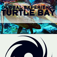 Albumcover Global Experience - Turtle Bay