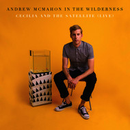 Andrew McMahon in the Wilderness - Cecilia And The Satellite (Live)