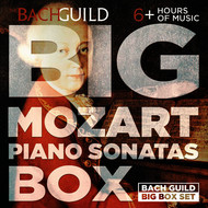 Jeffrey Biegel - Big Mozart Piano Sonatas Box