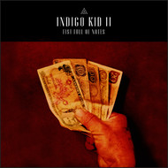 Indigo Kid - II: Fist Full of Notes