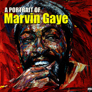 Marvin Gaye - A Portrait of Marvin Gaye