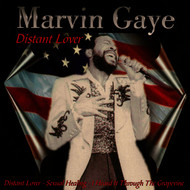 Marvin Gaye - Distant Lover