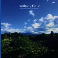 Anthony Child - Electronic Recordings from Maui Jungle, Vol. 2
