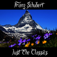 Franz Schubert - Franz Schubert: Just The Classics