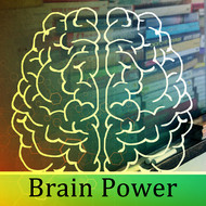 Instrumental - Brain Power – Soft Nature Sounds for Study, Zen Learning, Stress Free, Deep Focus, Concentration, Train Memory