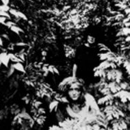 Picture of The Slits