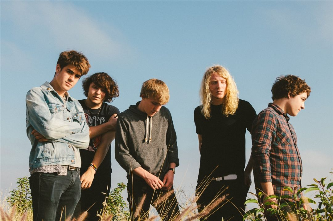 Picture of The Orwells